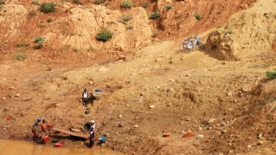 Busia Gold Miners asked to cooperate